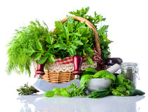 Πράσινα μαγειρεύοντας χορτάρια στο άσπρο υπόβαθρο Στοκ Εικόνες