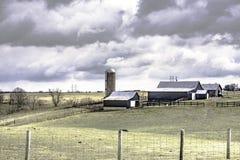 奶牛场在弗莱明县肯塔基 免版税库存图片