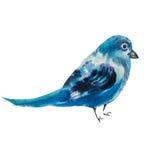 一只蓝色尖嘴鸟鸟的水彩例证 免版税库存照片
