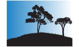 两树剪影  免版税图库摄影