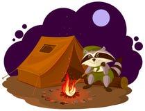 暑假阵营 坐在营火附近的侦察员浣熊 浣熊旅游帐篷集合 野营 免版税库存图片