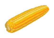 玉米穗在白色,传染媒介的 库存图片