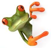 χαριτωμένος βάτραχος λίγα Στοκ φωτογραφία με δικαίωμα ελεύθερης χρήσης