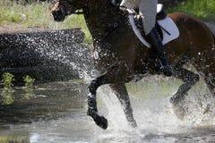 骑马飞溅 免版税图库摄影