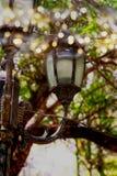 古色古香的街道灯笼抽象照片在树枝中的 葡萄酒与闪烁光的被过滤的图象 免版税库存图片