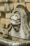 在喷泉的狮子头 免版税库存图片