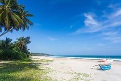 与棕榈树的大热带海滩 库存照片