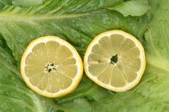 柠檬和莴苣 免版税库存照片