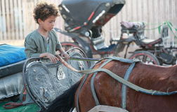 埃及男孩 免版税图库摄影