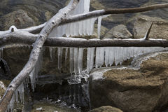 垂悬在湖的冰柱 库存照片