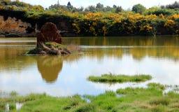 笤帚和硫磺岩石在湖 库存照片