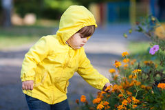 Μικρό κορίτσι σχετικά με τα λουλούδια Στοκ εικόνα με δικαίωμα ελεύθερης χρήσης