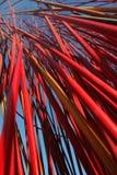 τέχνη Μελβούρνη σύγχρονη Στοκ Φωτογραφίες