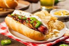 自创西雅图样式热狗 免版税库存图片