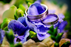Δύο χρυσά γαμήλια δαχτυλίδια λουλούδια και τα πράσινα υποβάθρου στα πορφυρά Στοκ Φωτογραφία