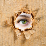 бумага отверстия глаза Стоковая Фотография RF