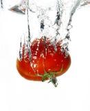 湿的蕃茄 免版税库存图片