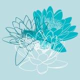 Флористическая предпосылка с лилией воды Стоковое Изображение