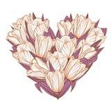 Флористическая предпосылка с цветками тюльпанов Стоковая Фотография