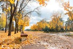 Αλέα στο πάρκο πόλεων φθινοπώρου Στοκ φωτογραφία με δικαίωμα ελεύθερης χρήσης