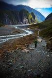 美丽风景狐狸冰川重要旅行的目的地 免版税库存照片