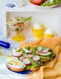 Свежие вкусные сандвичи Стоковое Изображение RF