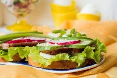 Свежие вкусные сандвичи Стоковая Фотография RF