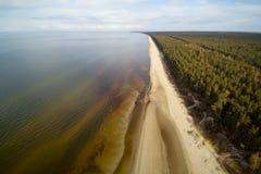 波罗的海,里加海湾海岸  免版税库存照片