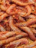 新鲜的虾在鱼市上 免版税库存图片