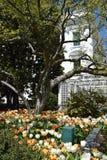 白宫在华盛顿特区, 免版税库存图片