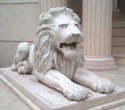 微暗的狮子 库存图片