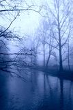 зима валов тумана Стоковые Фото