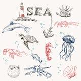 Комплект перемещения моря Стоковые Фотографии RF