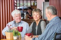 Зрелая группа в кофейне Стоковые Фото