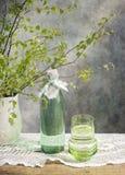 桦树树汁 免版税库存照片