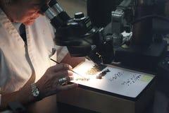 看通过显微镜的妇女科学家 免版税库存照片