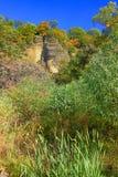 伊利诺伊国家森林风景 免版税库存图片