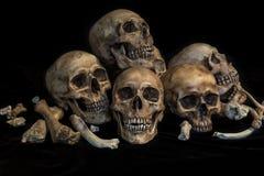 小组在种族灭绝概念的头骨 库存照片