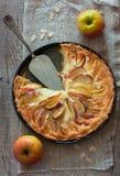 κέικ μήλων σπιτικό Στοκ φωτογραφία με δικαίωμα ελεύθερης χρήσης