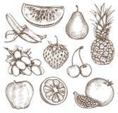Φρούτα, σχέδιο χεριών σκίτσων Στοκ φωτογραφία με δικαίωμα ελεύθερης χρήσης
