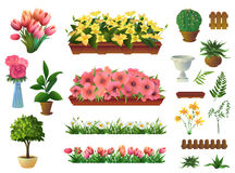 Εγκαταστάσεις και λουλούδια, σύνολο διανυσματικών στοιχείων Στοκ Φωτογραφία