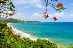 Θερινή παραλία Πουέρτο Ρίκο Στοκ φωτογραφία με δικαίωμα ελεύθερης χρήσης