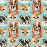 水彩宠物设置了五颜六色的无缝的背景 库存图片