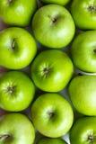 Зеленые яблоки Стоковые Изображения