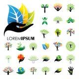 Значки логотипа человеческой жизни абстрактных векторов дерева людей Стоковое Фото