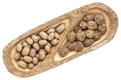 Пеканы и черные грецкие орехи в деревянном подносе Стоковые Изображения