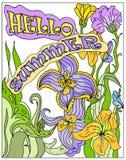 多色装饰你好夏天的海报 库存图片
