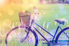 日本老自行车/自行车在一片绿色稻田 库存图片