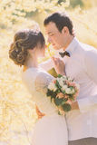 肉欲的美丽的年轻白肤金发的新娘和英俊的新郎面对面在公园特写镜头的日落 免版税库存图片