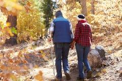 走通过秋天森林地的资深非裔美国人的夫妇 免版税图库摄影